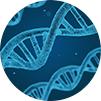 Marin Biologic – PCR-QPCR