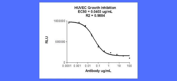 Marin Biologic – HUVEC Growth Inhibition 4