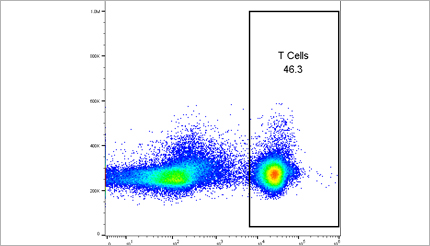 Marin Biologic – T Cells