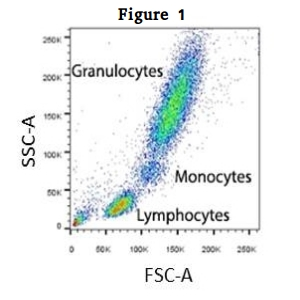 FLOW CYTOMETRY of T and B Cells and NK Cells 1